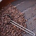 Werken als barista bij Starbucks door Nederland